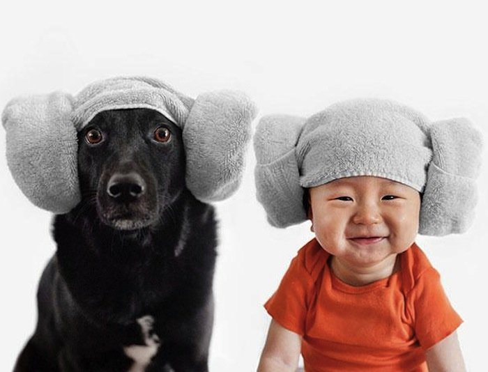 Rescue Dog And Baby (3)