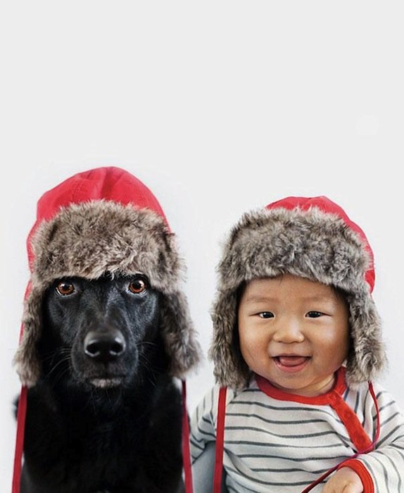 Rescue Dog And Baby (2)