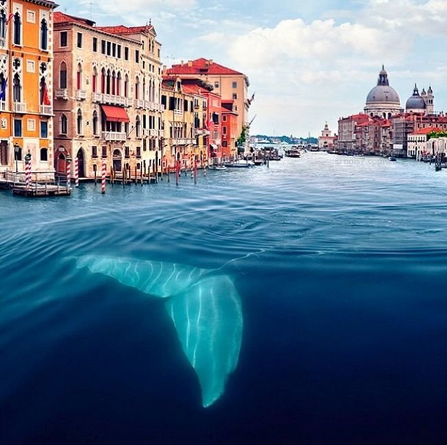 Beautiful surreal photos (3)
