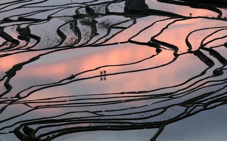World's Largest Terraced Paddy Fields, Yuen Yang, China (9)