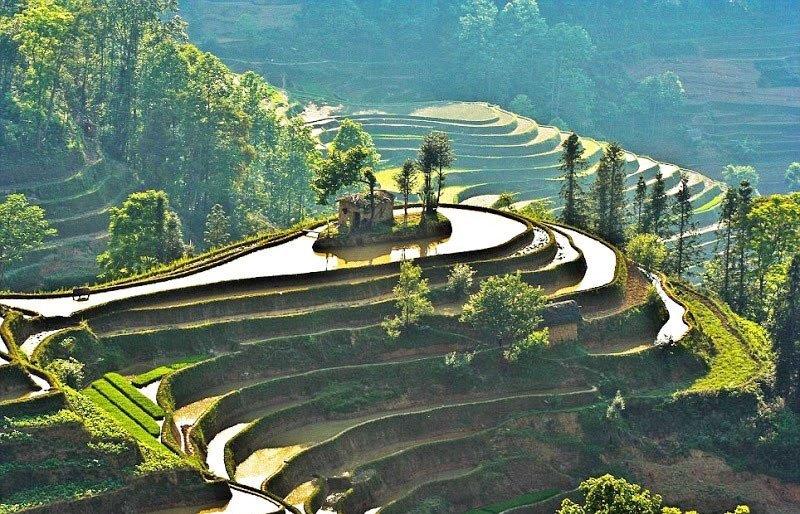 World's Largest Terraced Paddy Fields, Yuen Yang, China (3)