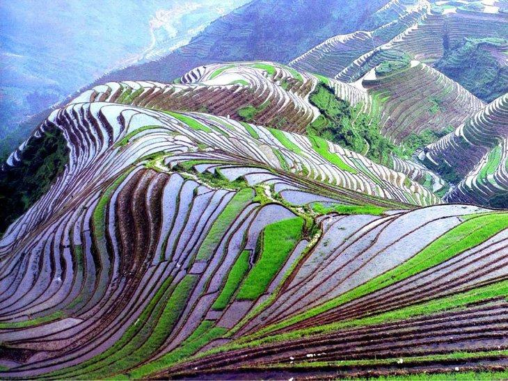 World's Largest Terraced Paddy Fields, Yuen Yang, China (2)