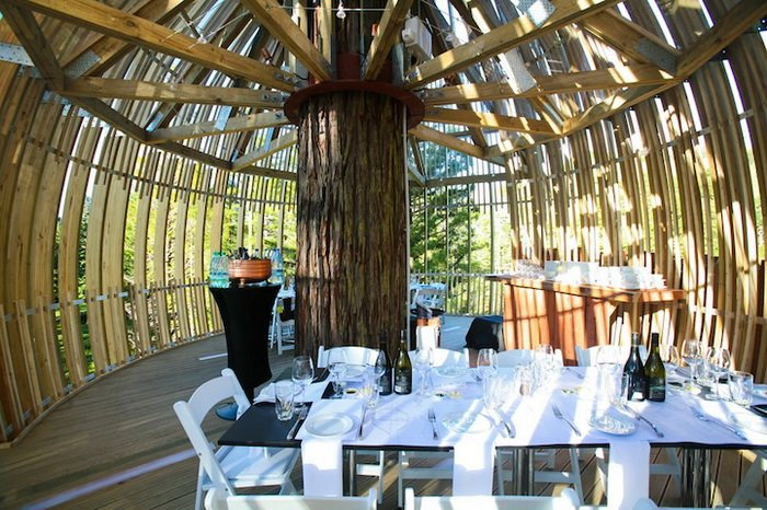 Restaurant Yellow Treehouse (Auckland, New Zealand) (4)