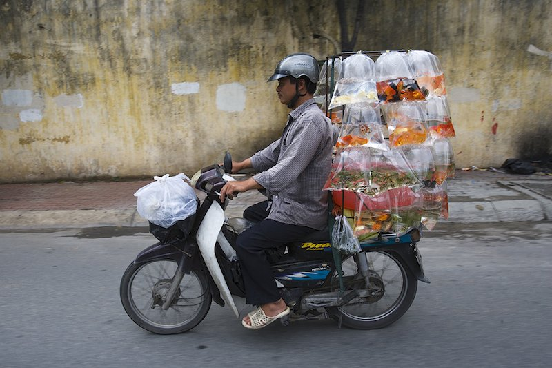 "Vietnam's ""Bikes of Burden"" by Hans Kemp (4)"