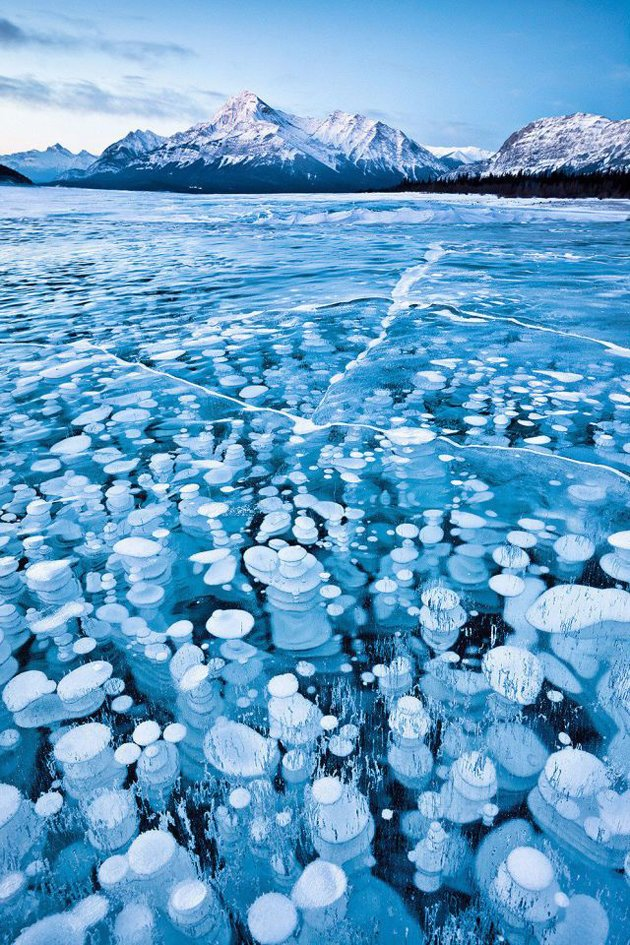 Canadian_Rockies_winter