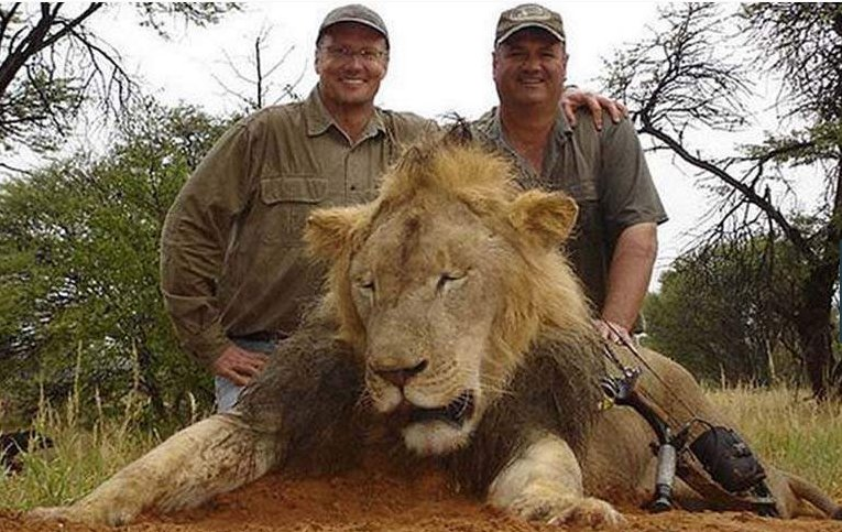 Walter Palmer poses hunting Animals  (6)