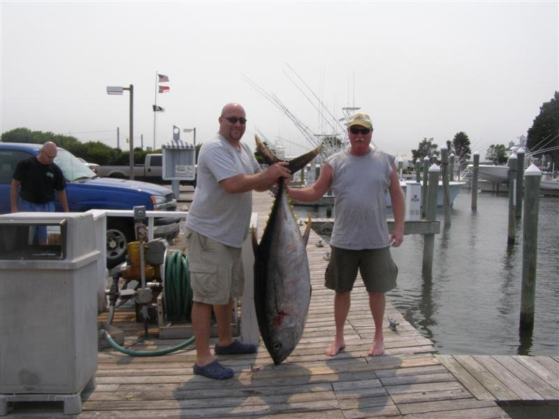Successful capture pictures - Oregon inlet fishing  (3)