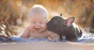 BabynBulldog06