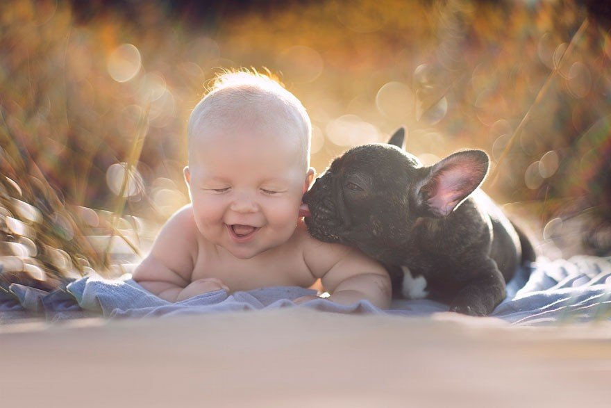 Baby And Bulldog Photography (3)