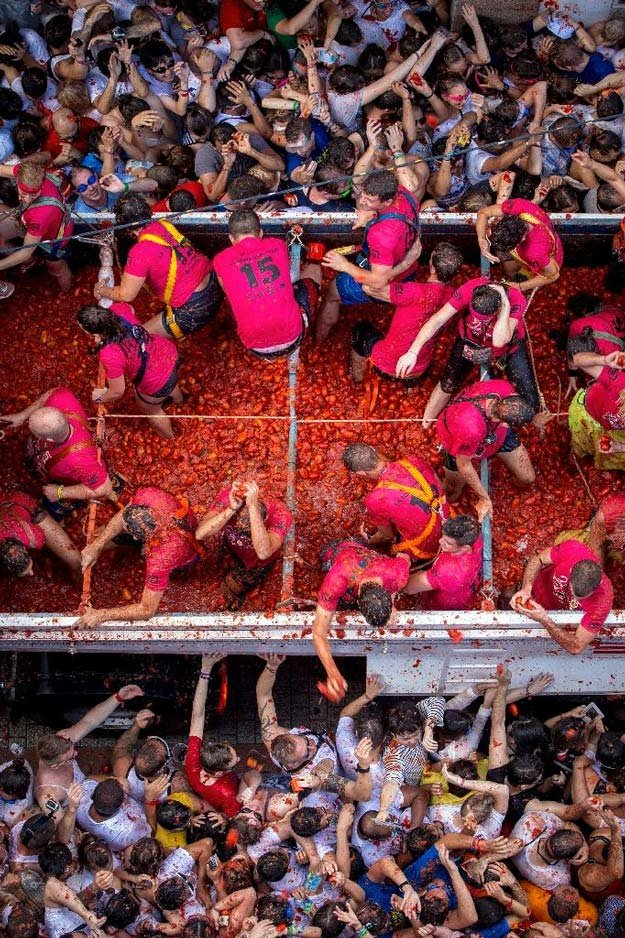 70th annual tomato food fight, in Photography (2)