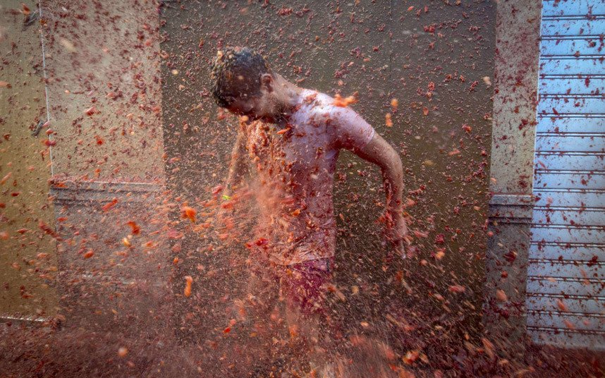 70th annual tomato food fight, in Photography (10)
