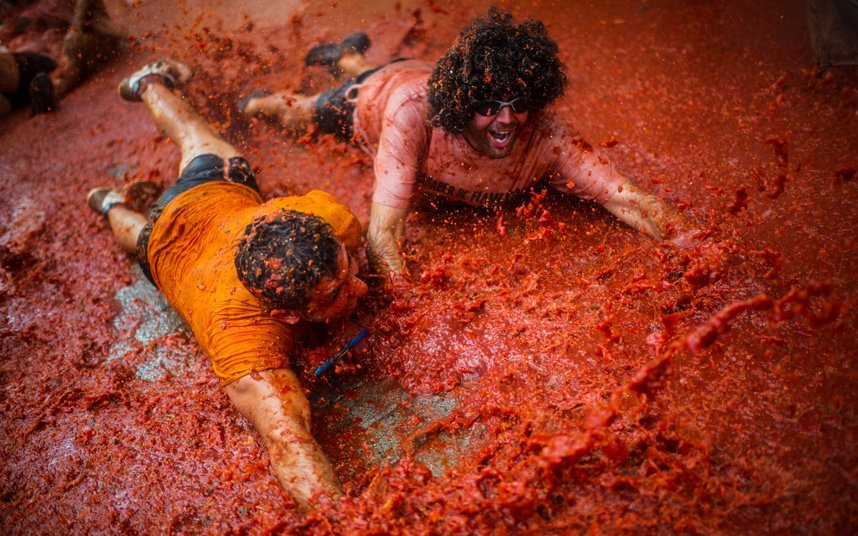 70th annual tomato food fight, in Photography (3)