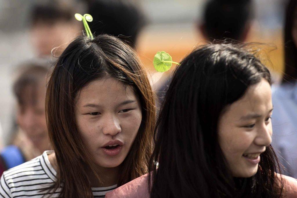 chinese hairpin (7)
