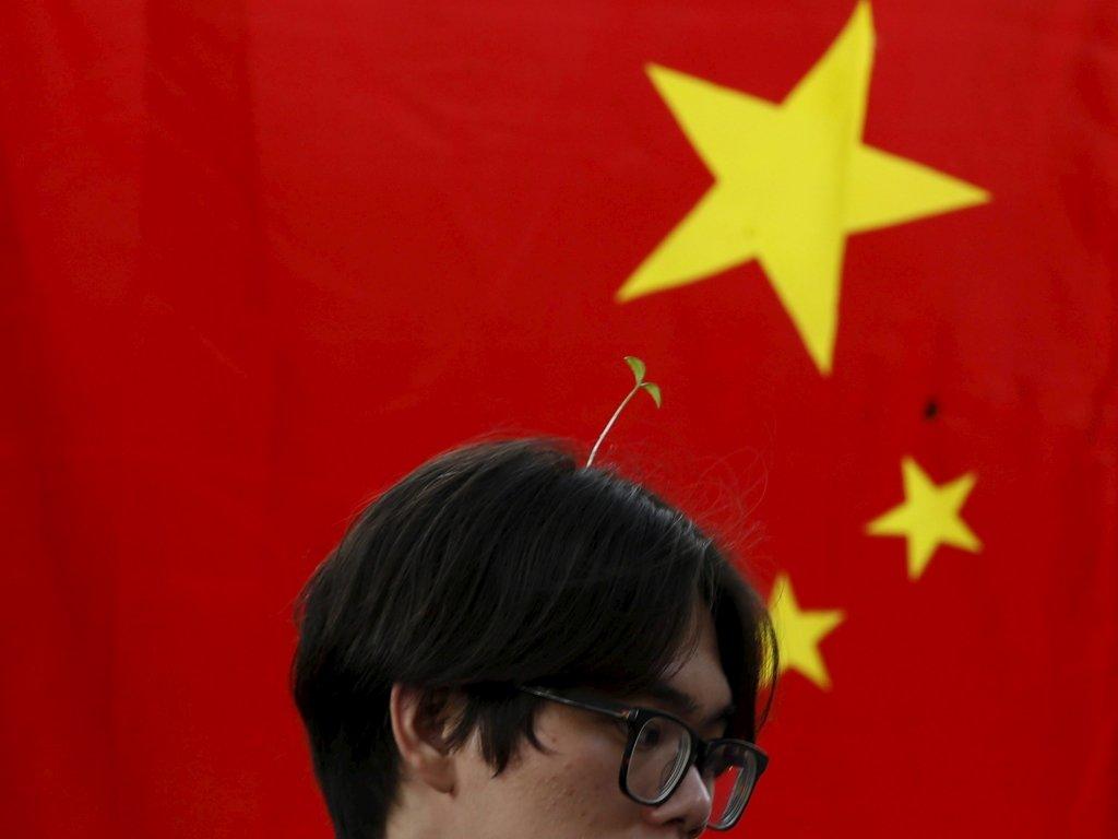chinese hairpin (5)