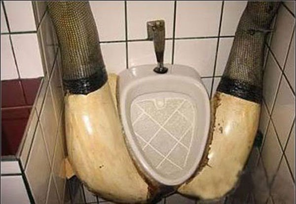These Unique and Creative Toilet and Urinal Designs (5)