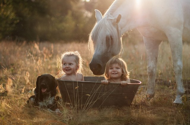 Children And Animals Photography Contest (17)