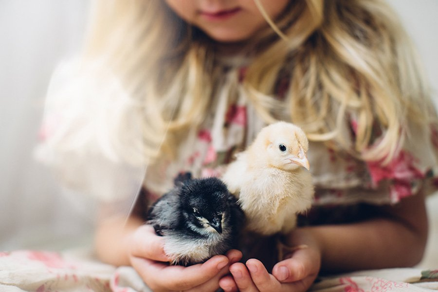Children And Animals Photography Contest (16)