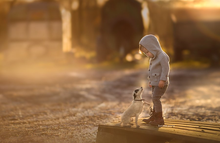 Children And Animals Photography Contest (9)