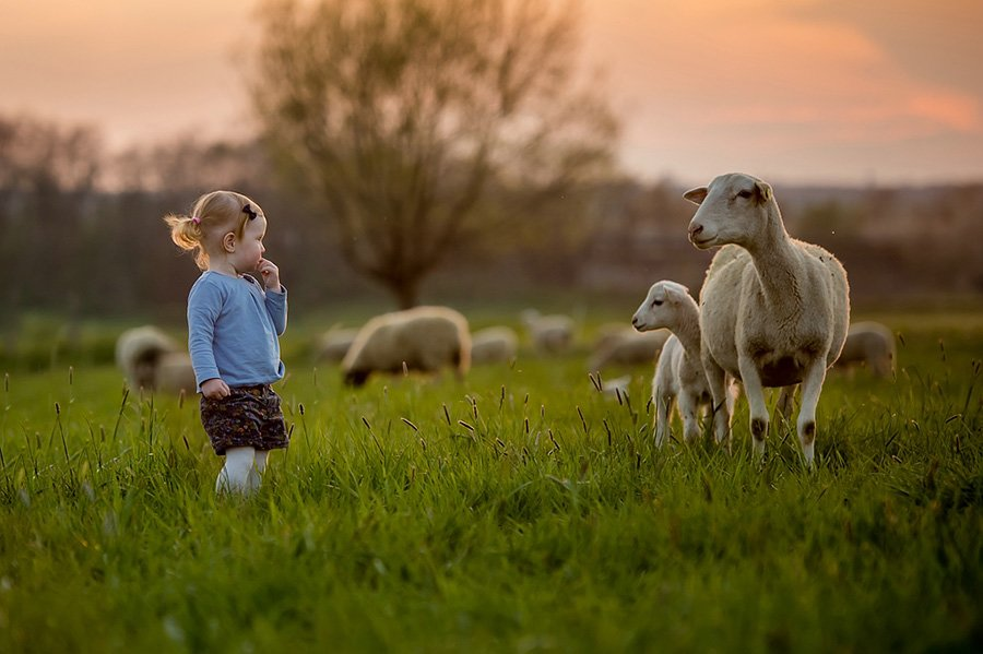 Children And Animals Photography Contest (4)