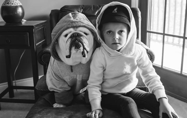 Animal Friendship Portraits (8)