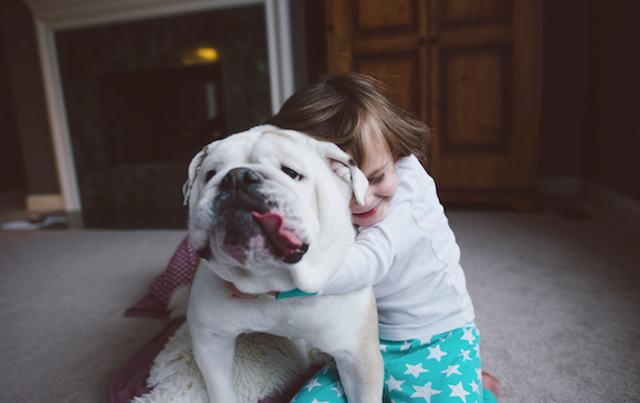 Animal Friendship Portraits (14)