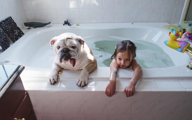 Animal Friendship Portraits (12)