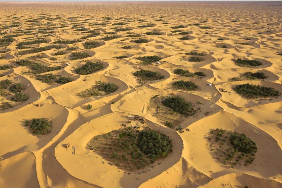Adjder Oasis near Timimoun, Algeria